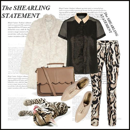 outfit_large_9524752d-728a-41e6-aa19-09602f661f3b.jpg