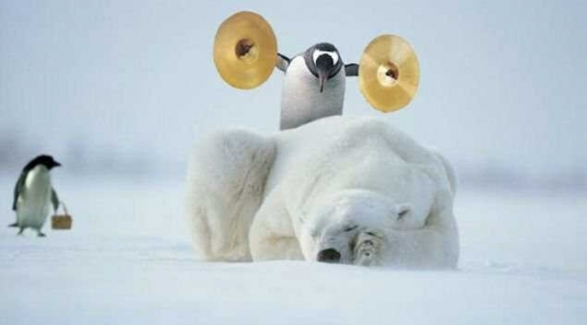 penguin_polar_bear_symbols.jpg