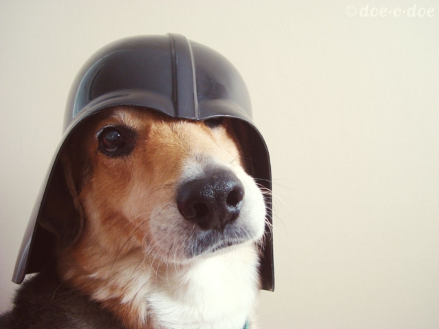 darth_dog_2.jpg