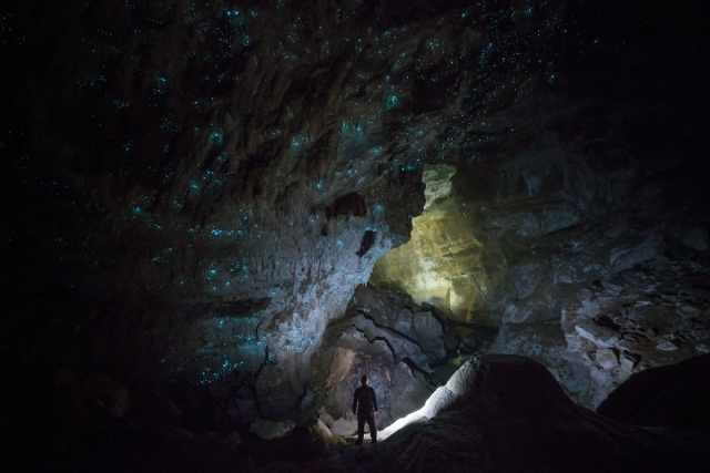 hollow-hill-cave-glowworms-sjp-15-5a332a8e160a3__880.jpg