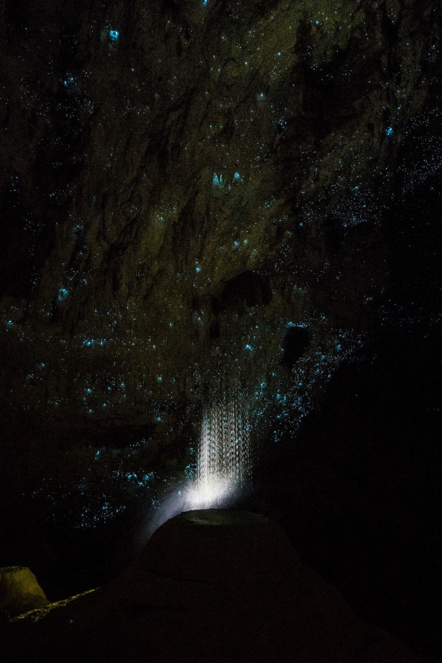 hollow-hill-cave-glowworms-sjp-16-5a332a9501340__880.jpg