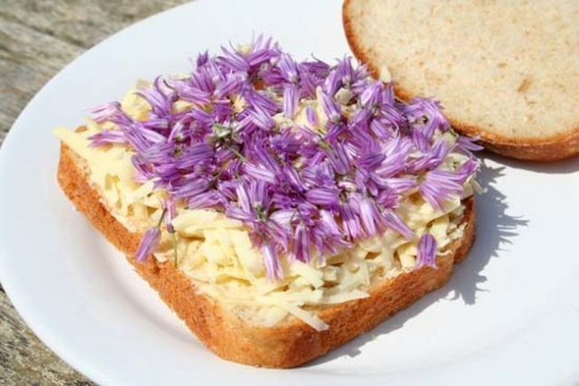 chive_flowers_are_edible_sandwich.jpg