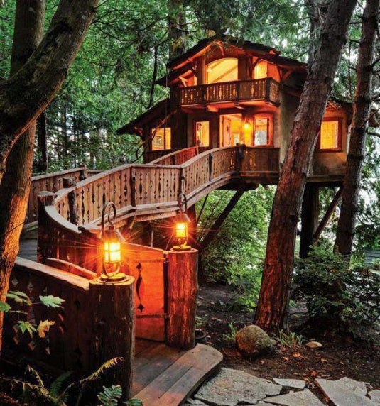 unusual-but-interesting-tree-houses-1.jpg
