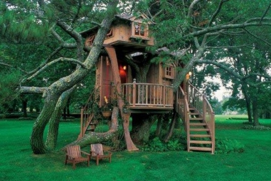 unusual-but-interesting-tree-houses-4.jpg
