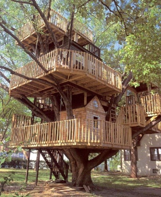 unusual-but-interesting-tree-houses-7.jpg