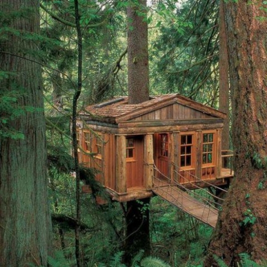 unusual-but-interesting-tree-houses-9.jpg