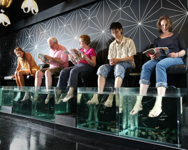watch-this-amazing-fish-spa-therapy.jpg