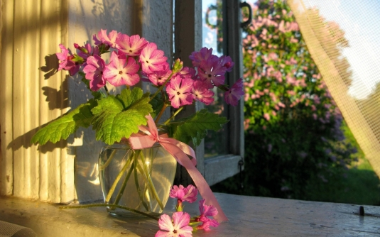 nature___flowers_bouquet_of_flowers_in_a_glass_vase_046912_12.jpg