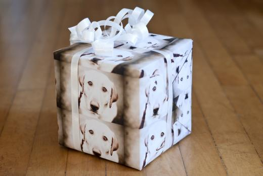 blog-3-07-photo-wrapping-paper-060.jpg