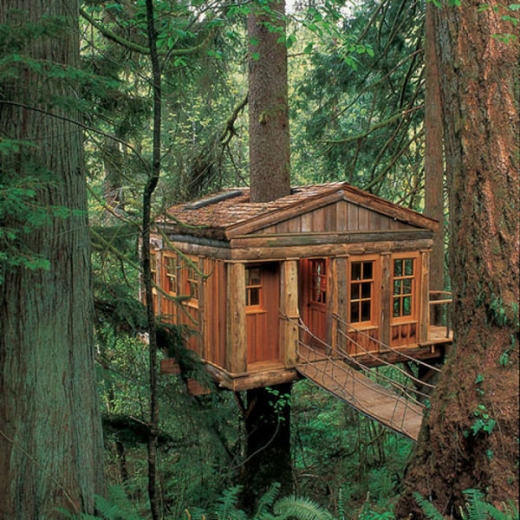 breathtaking_tree_houses_throughout_the_world_640_18.jpg