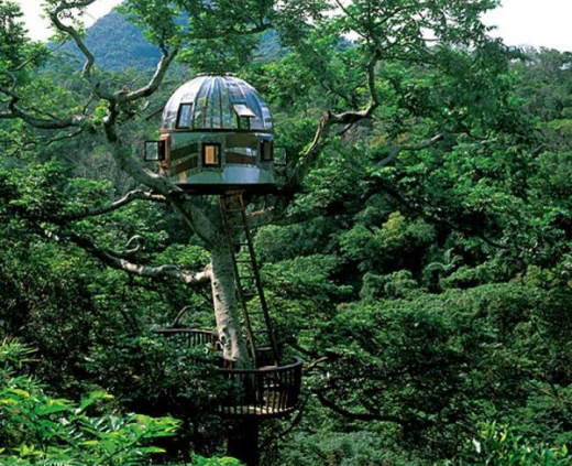 breathtaking_tree_houses_throughout_the_world_bguyy_640_01.jpg