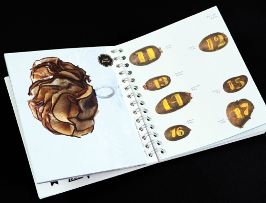 eat-design-with-food-book-6.jpg