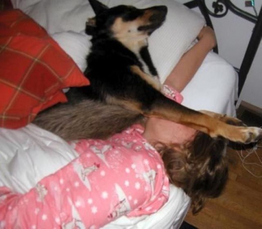 napping_with_pets_640_06.jpg
