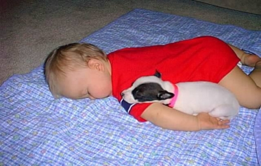 napping_with_pets_640_17.jpg