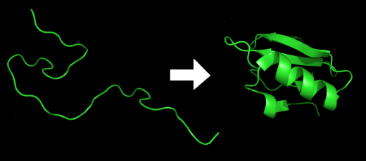 protein_folding.png
