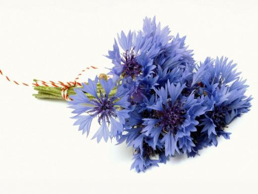 blue-flower-bouquet-1-tsk5rep1eq-1024x768.jpg
